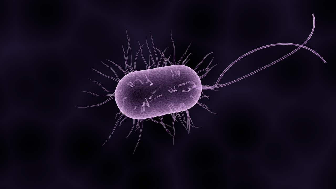 The impact of antibiotic resistant infections in Europe