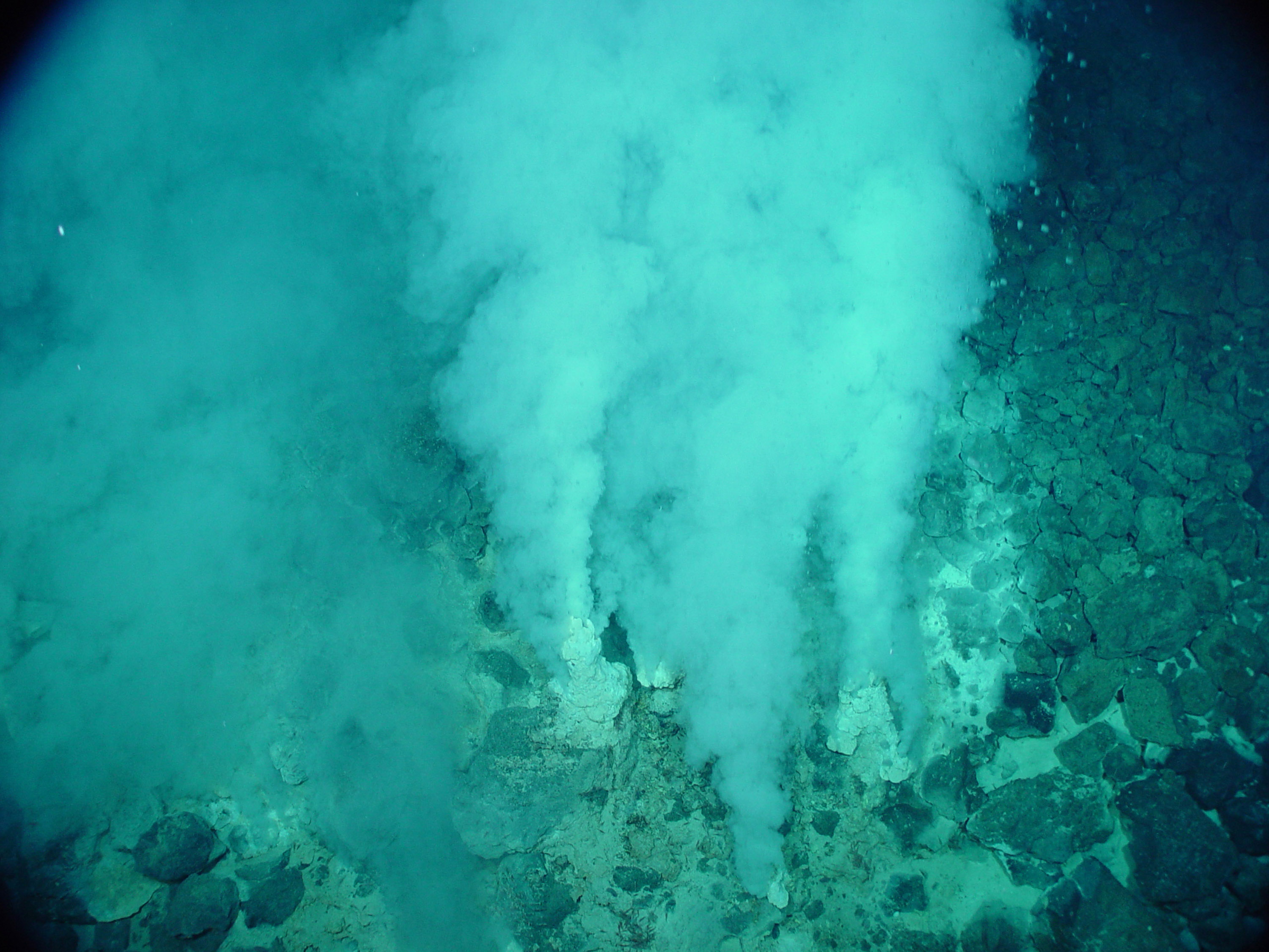 Are the Building Blocks of Life From A Hydrothermal Vent?