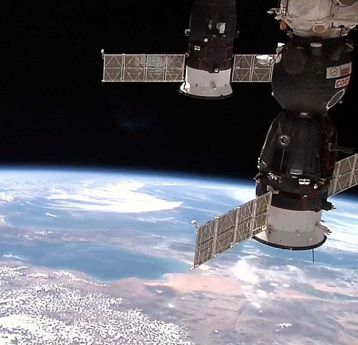Safety in Numbers: Bacterial Resistance in Space