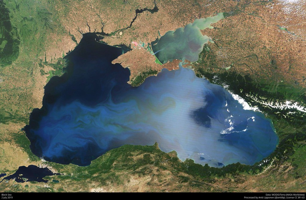 Bacteria from the Black Sea Have an Unusual Diet