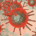virus spikey balls
